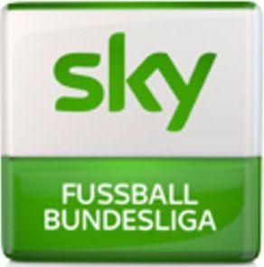 sky-buli-logo